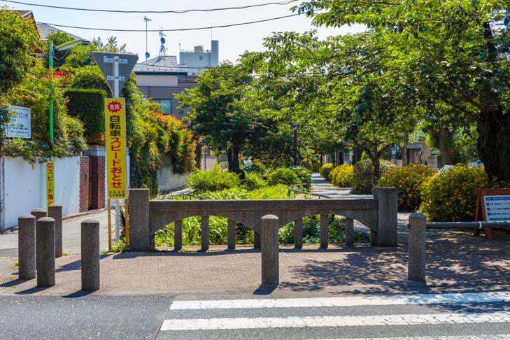 北沢川緑道-124.jpg
