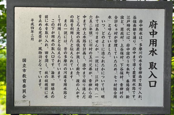 futyu_yosui-10.jpg