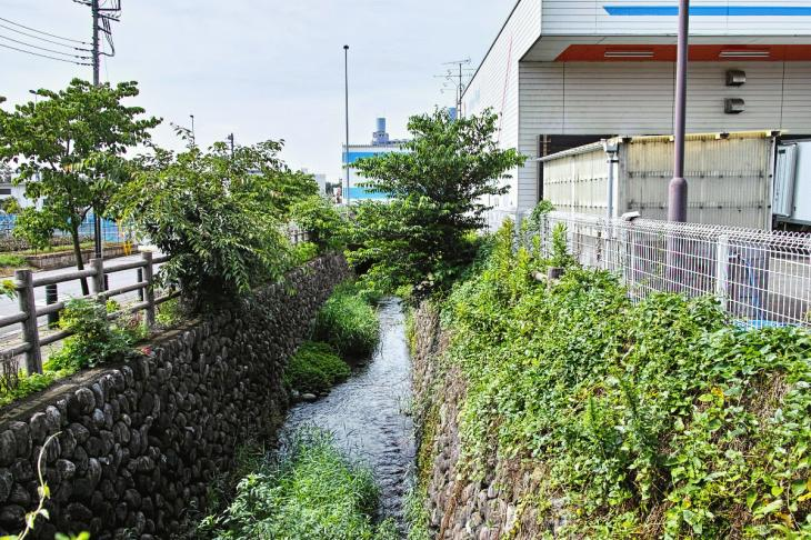 futyu_yosui-44.jpg