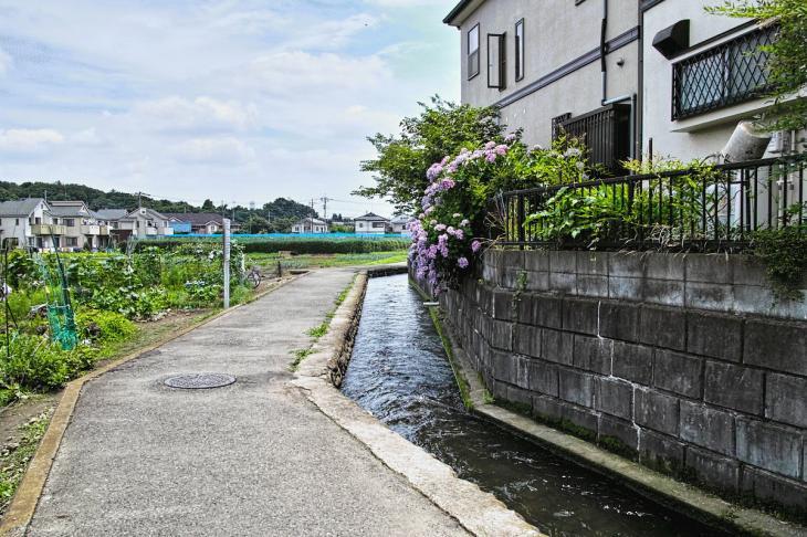 futyu_yosui-48.jpg