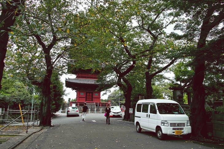 honmonji-4.jpg