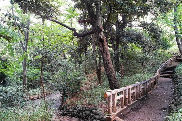 honmonji-7.jpg