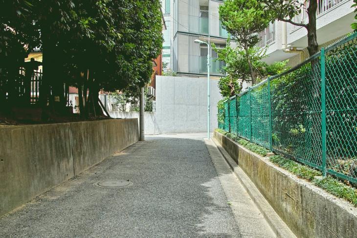 kohonegawa-21.jpg