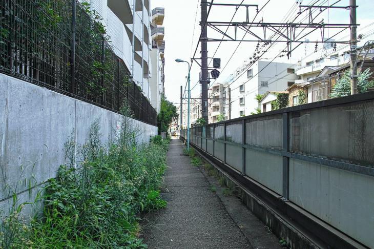 kohonegawa-25.jpg