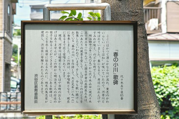 kohonegawa-30.jpg