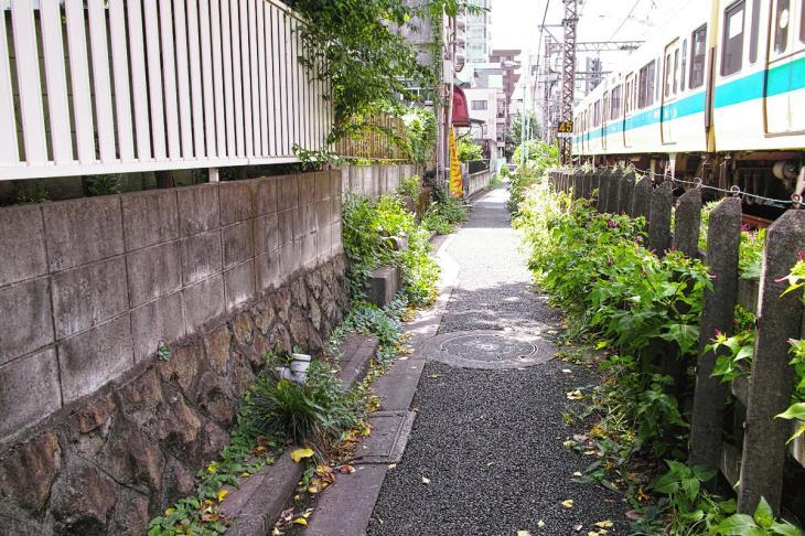 kohonegawa-31.jpg