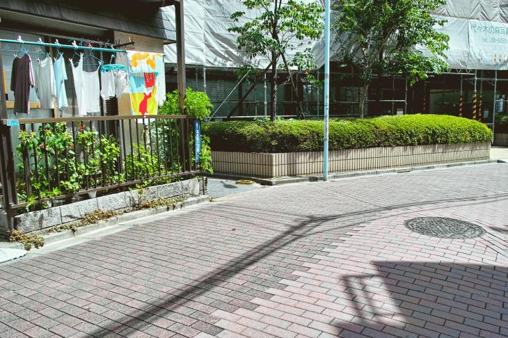 kohonegawa-37.jpg