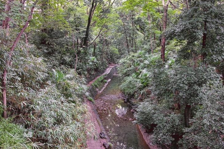 kuhonbutugawa-2.5.jpg