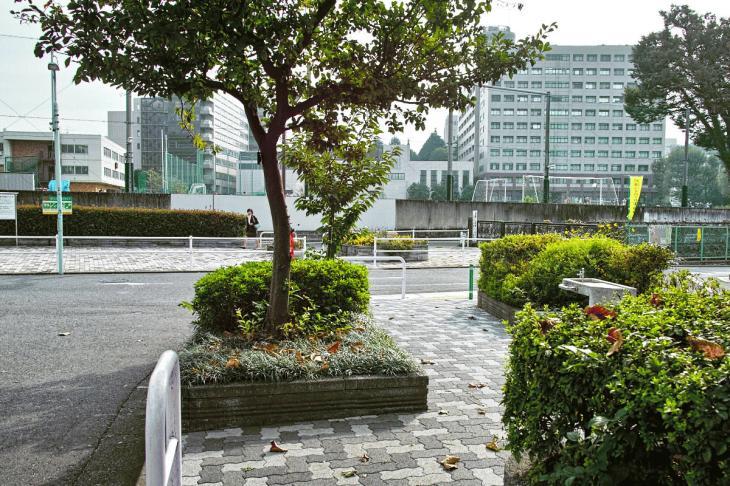 kuhonbutugawa-41-4.jpg