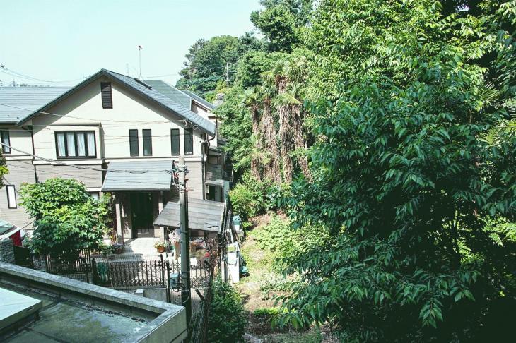 negawa-2.jpg