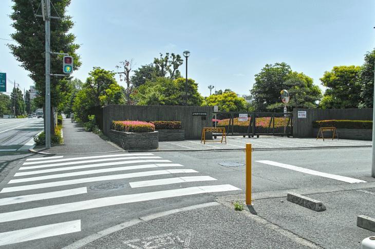 negawa-24.jpg