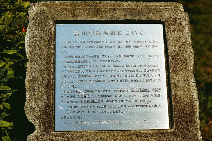 negawa-32.jpg