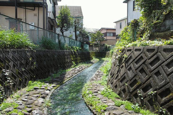 nogawa_kokubunji-11.jpg
