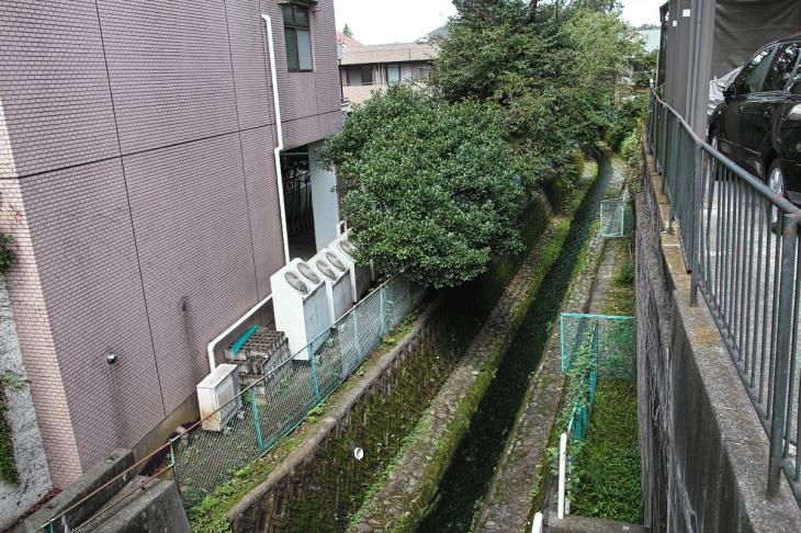 nogawa_kokubunji-14.jpg