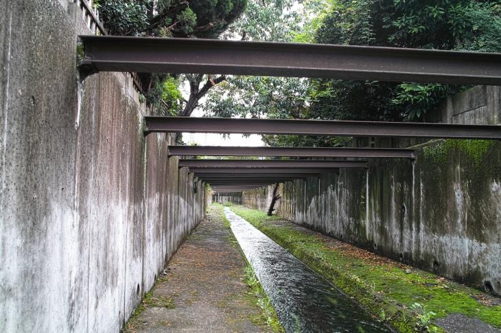 nogawa_kokubunji-22.jpg