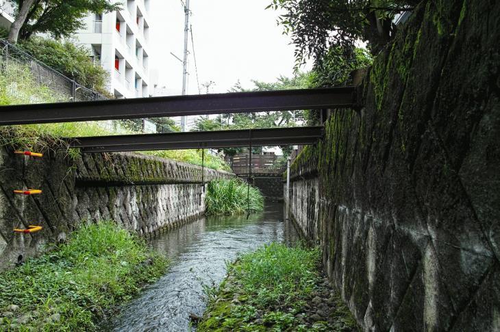 nogawa_kokubunji-23.jpg