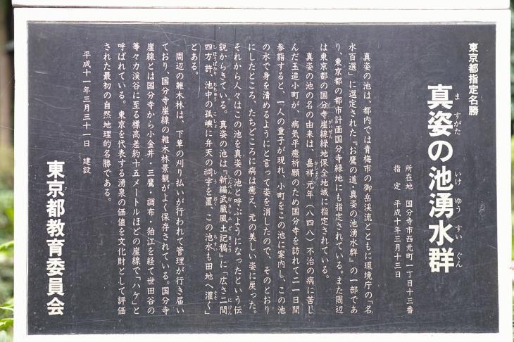 nogawa_kokubunji-62.jpg