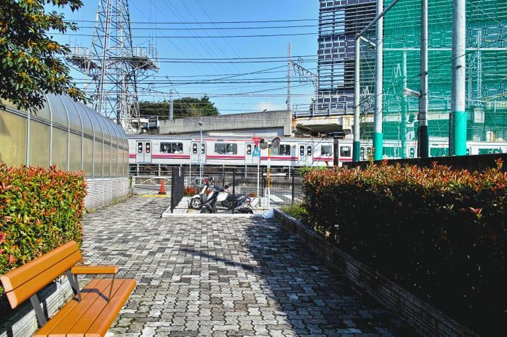 nomikawa-31.jpg