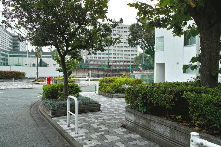 nomikawa-33-2.jpg