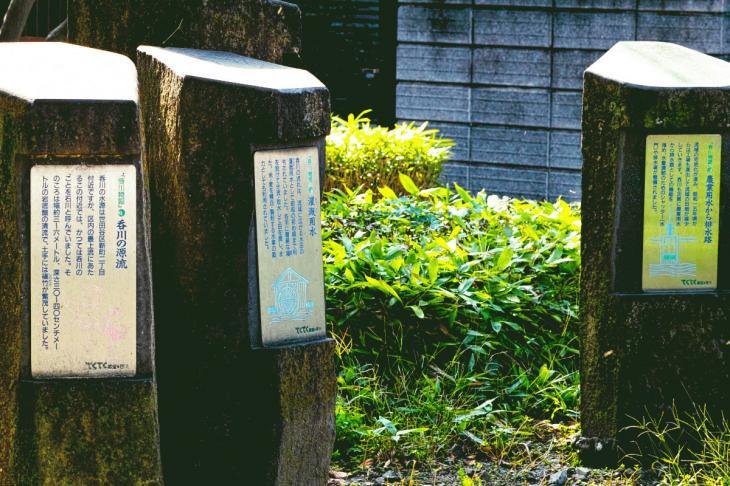nomikawa-39.jpg
