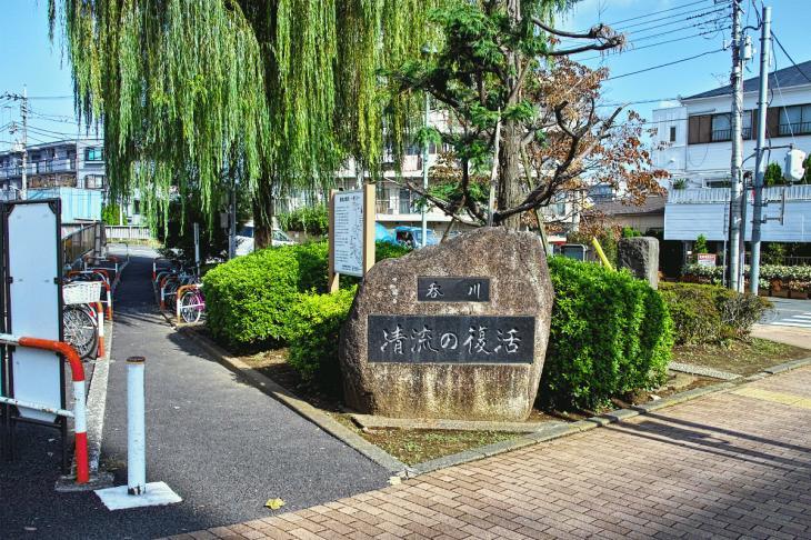 nomikawa-45.jpg