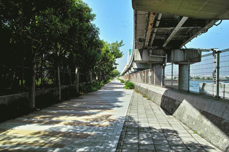 nomikawa-66.jpg