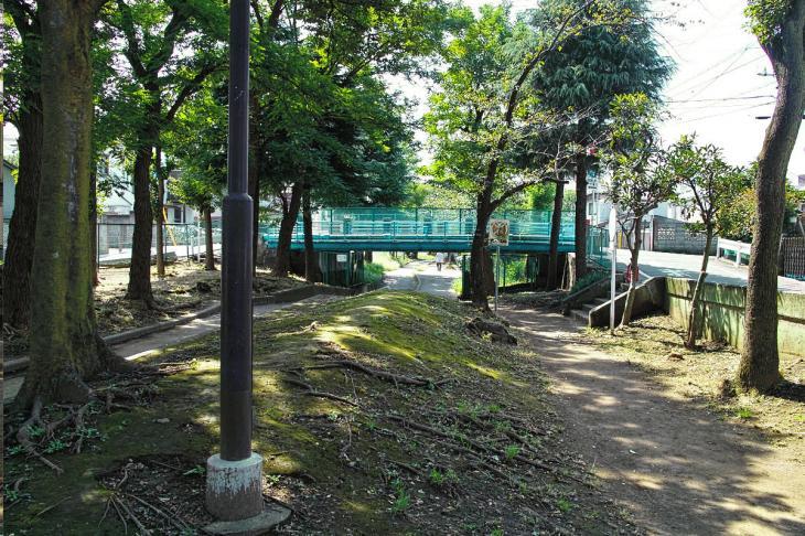 nomikawa-74.jpg