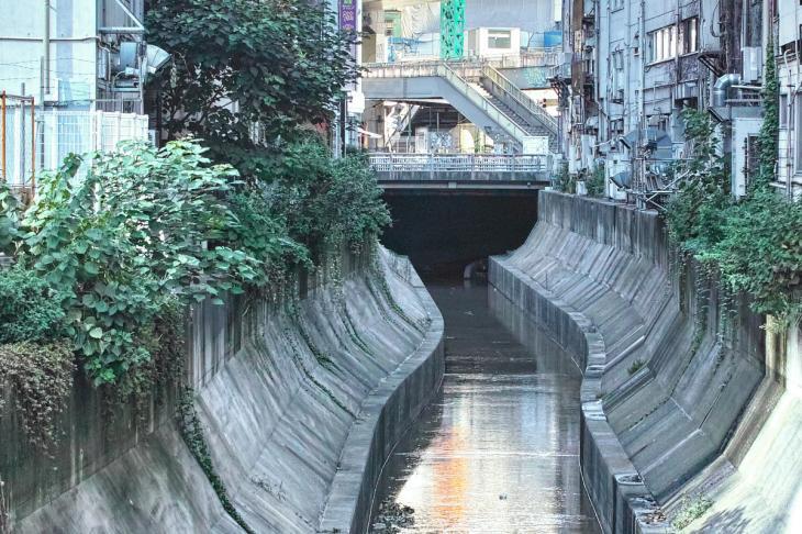shibuya-23.jpg