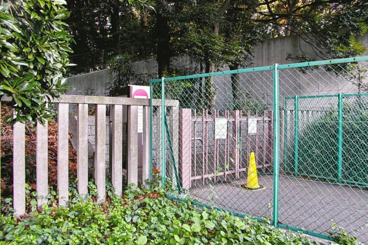 shibuyagawa_genryu-11.jpg