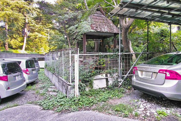 shibuyagawa_genryu-19.jpg