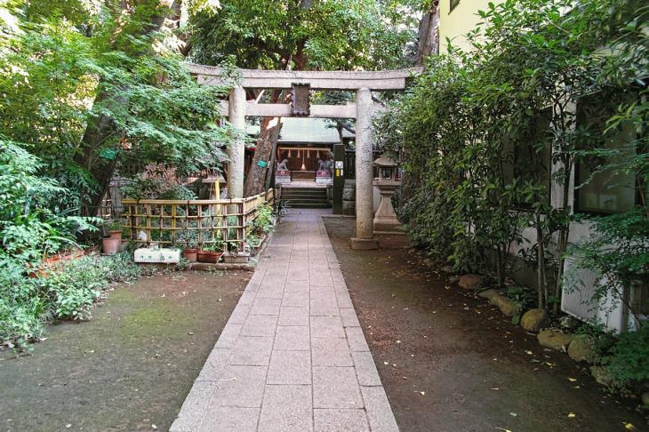 shibuyagawa_genryu-23.jpg