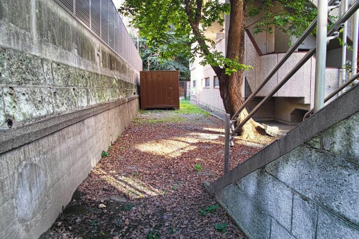 shibuyagawa_genryu-35.jpg