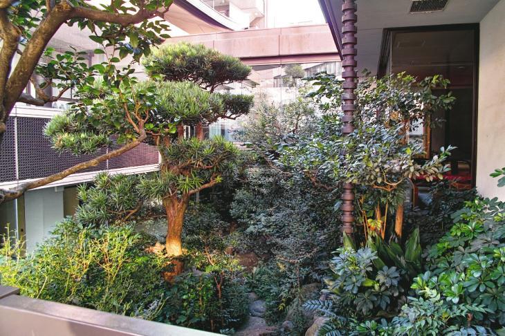 shibuyagawa_genryu-5.jpg