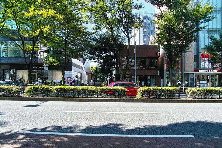 shibuyagawa_genryu-62.jpg