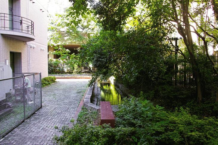 udagawa_genryu-13.jpg