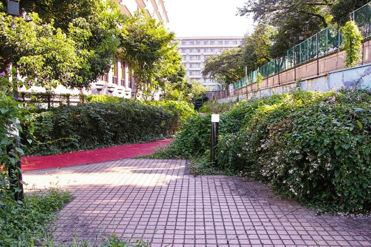 udagawa_genryu-2.jpg