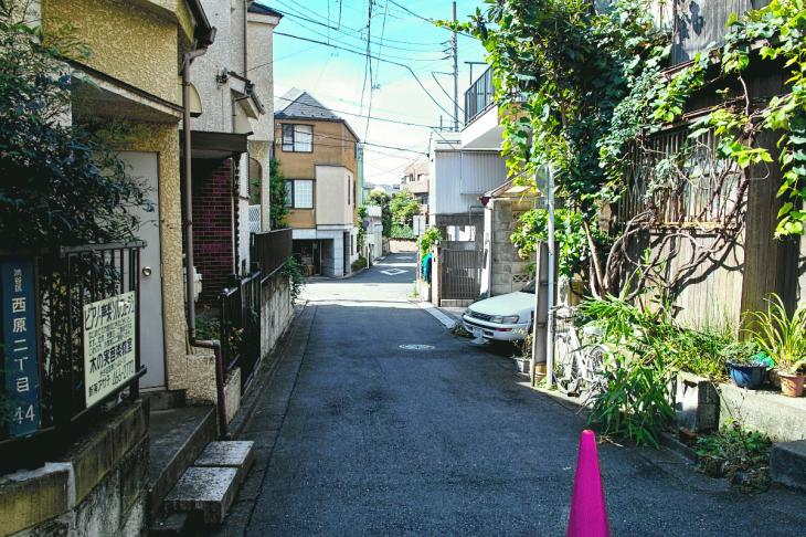 udagawa_genryu-20.jpg