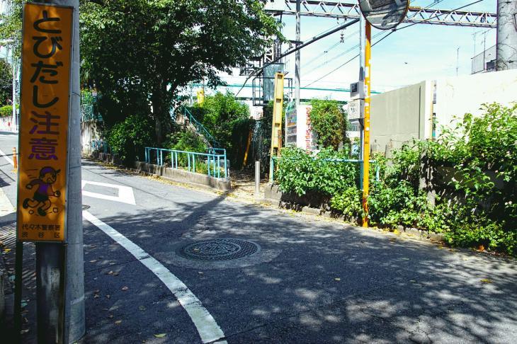 udagawa_genryu-38.jpg