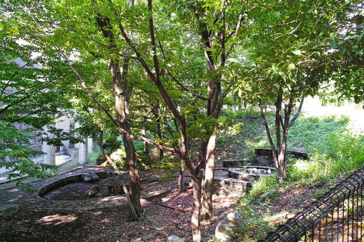 udagawa_genryu-4.jpg