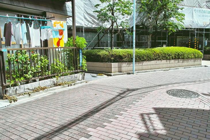 udagawa_genryu-50.jpg