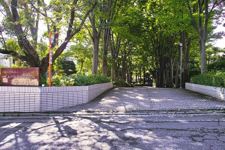 udagawa_genryu-8.jpg