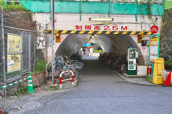 udagawa_karyu-19.jpg