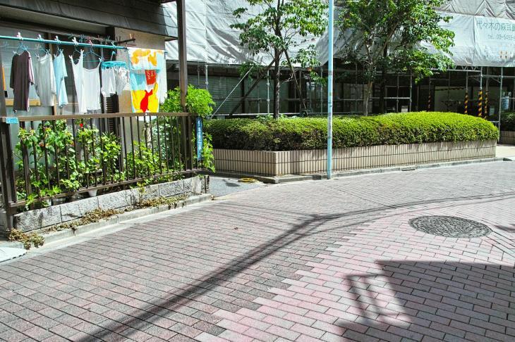 udagawa_karyu-2.jpg