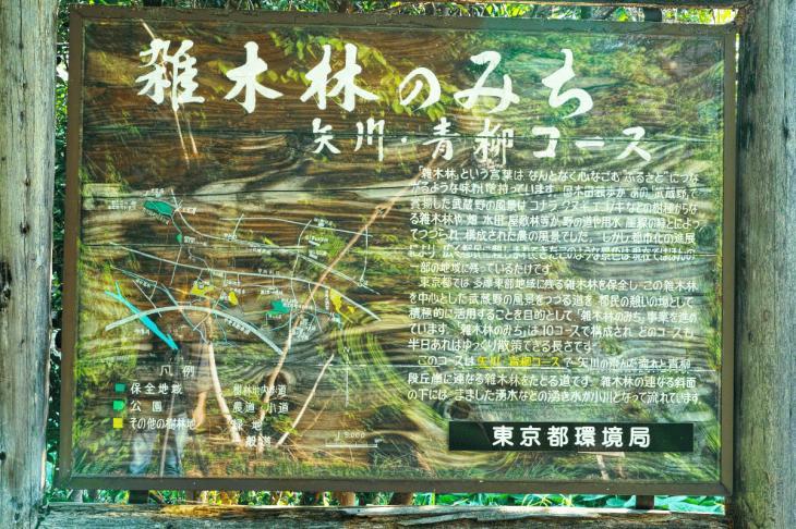 yagawa-16.jpg