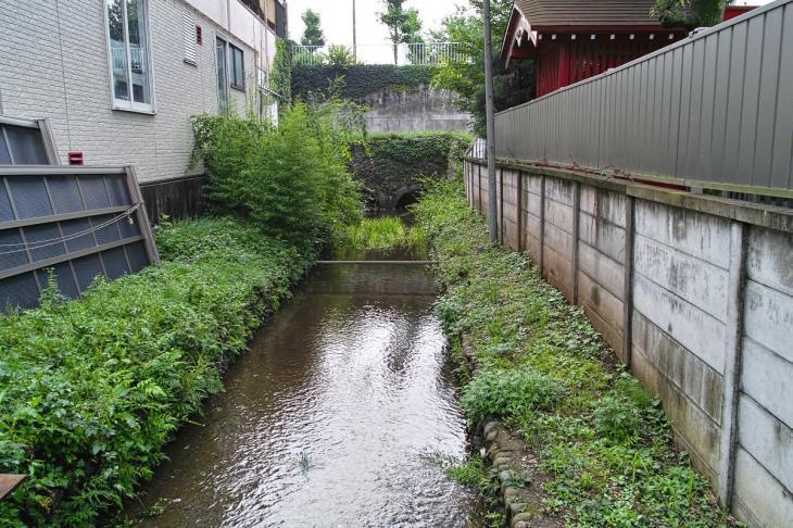 yagawa-2.jpg
