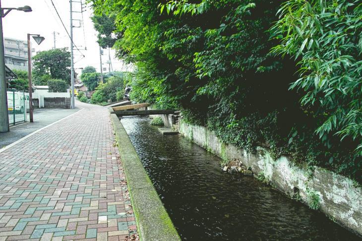 yagawa-28.jpg