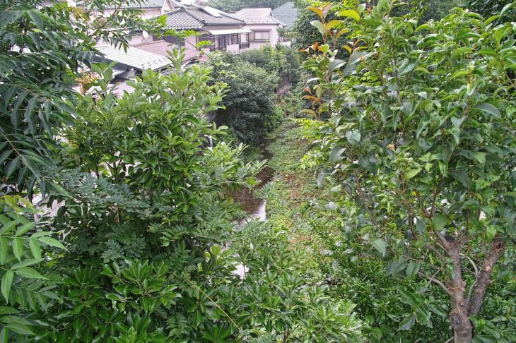 yagawa-4.jpg