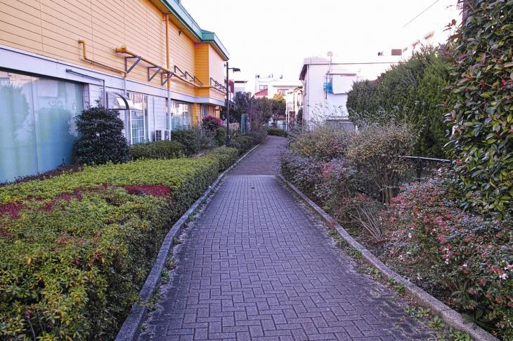 151226karasuyamagawa-17.jpg