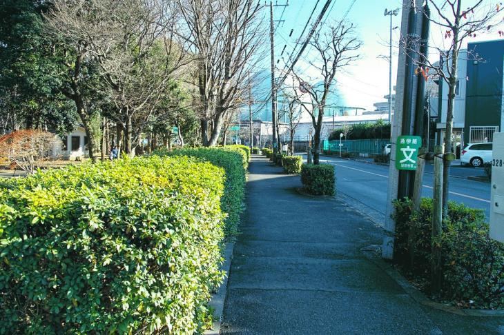 151226karasuyamagawa-26-2.jpg