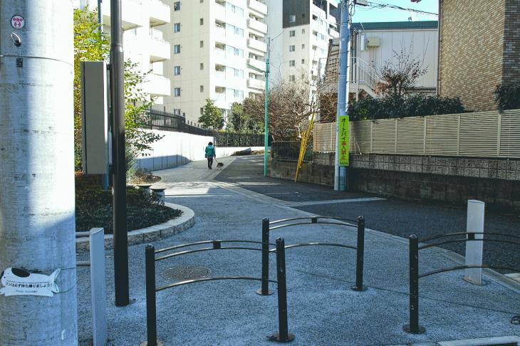 151226karasuyamagawa-69.jpg